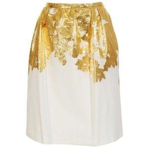 Dries Van Noten skirt size 8(40) in EUC